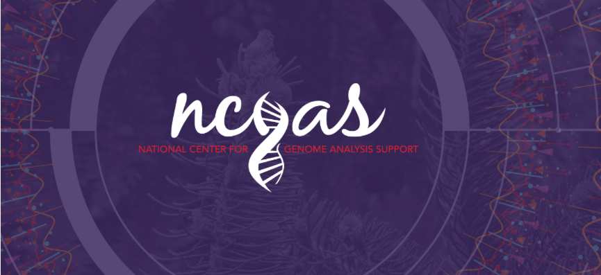 National Center for Genome Analysis Support logo